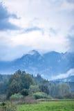 Couleur d'automne dans les hautes montagnes vertes Images stock