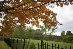 Couleur de 2009 automnes Image libre de droits