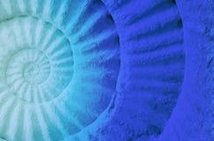 Couleur de fossile préhistorique d'ammonite Photographie stock