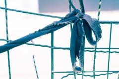Couleur en pastel de noeud de vintage sur la ligne à la texture et au bagout créatifs Images stock