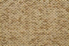 Couleur jaune de la terre d'Anemon Kombin 02 de texture de tissu de textile Photographie stock libre de droits