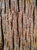 Couleur noire et blanche de vieille texture en bois photos libres de droits