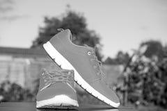 Couleur orange lumineuse d'espadrilles de chaussures de sports Photographie stock libre de droits