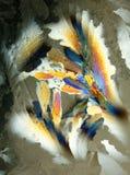 Couleur réfractée dans le cristal de glace Photos stock