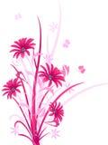 Couleur rose décorative florale, illustration Images libres de droits