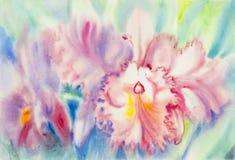 Couleur rose de peinture des feuilles de fleur et de vert d'orchidée Image libre de droits