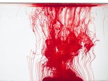 Couleur rouge dans l'eau Photo libre de droits