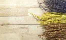 Couleur trois de riz non-décortiqué sur le fond en bois Images stock