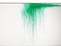 Couleur verte dans l'eau Photo stock