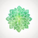 Couleur verte de fleur de lotus d'aquarelle Photos stock