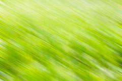 Couleur verte trouble Photo stock