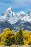 Couleurs automnales en parc national grand de Teton Images libres de droits