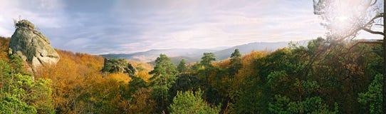 Couleurs chaudes de la forêt dans les montagnes image libre de droits