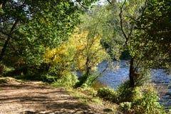 Couleurs d'automne à l'arrière-plan de forêt avec le chemin, la rivière et les arbres avec les feuilles jaunes et vertes La Galic images stock