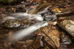 Couleurs d'automne à la gorge de Lydford Photos stock
