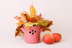 Couleurs d'automne Image stock