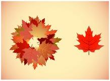 Couleurs 9 d'automne Images libres de droits