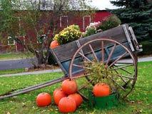Couleurs d'automne au New Jersey Photographie stock
