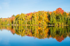 Couleurs d'automne au Québec, Canada Photos stock