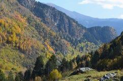 Couleurs d'automne dans les forêts mélangées de parc naturel de Posets-Maladeta, Espagnol Pyrénées Photographie stock