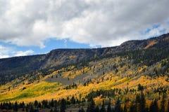 Couleurs d'automne de Hillside Photographie stock libre de droits