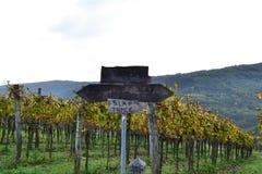 Couleurs d'automne de Koper Slovénie Photo libre de droits