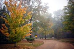 Couleurs d'automne de l'Arkansas de ressorts de Heber Photographie stock