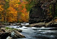 Couleurs d'automne de rivière de Tellico avec de l'eau de précipitation brouillé images libres de droits