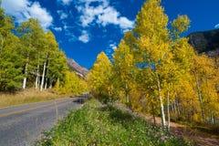 Couleurs d'automne du Colorado de tellurure de dent de la route 145 d'E Photographie stock