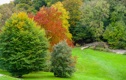 Couleurs d'automne en parc d'Ilam, Dovedale Images stock