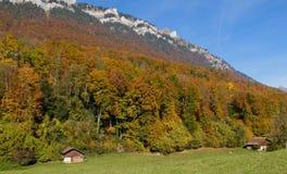 Couleurs d'automne en Suisse Photos stock