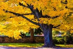 Couleurs d'automne et une barrière au cimetière national de Gettysburg Photo stock
