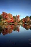 Couleurs d'automne, lac brant, NY Images stock
