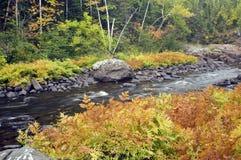 Couleurs d'automne le long de fleuve Photographie stock libre de droits