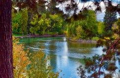 Couleurs d'automne montrant à l'étang de miroir près de la courbure, Orégon photo stock