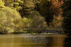 Couleurs d'autum d'automne Photos libres de droits