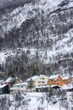 Couleurs dans la neige photographie stock