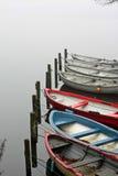 Couleurs dans le brouillard Photo stock