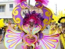 Couleurs de carnaval Photo libre de droits