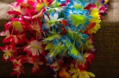 Couleurs de carnaval Photo stock