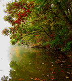 Couleurs de chute au-dessus d'une rivière brumeuse Photographie stock