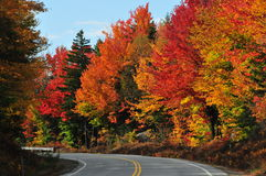 Couleurs de chute, New Hampshire Photo libre de droits