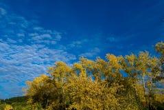Couleurs de ciel d'automne photographie stock