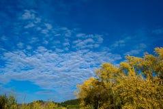 Couleurs de ciel d'automne photos stock