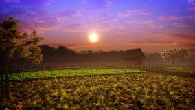 Couleurs de coucher du soleil de paysage d'imagination Images stock