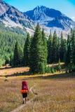 Couleurs de feuillage d'automne du Colorado de randonneur de randonneur image libre de droits