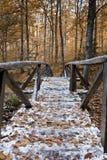 Couleurs de l'automne Photos stock