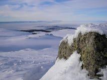 Couleurs de l'hiver Photographie stock libre de droits