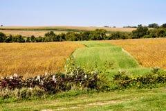 Couleurs de l'Iowa Image libre de droits