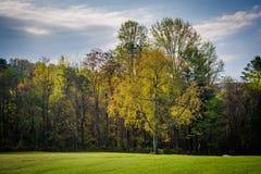 Couleurs de ressort sur des arbres en vallée de Shenandoah rurale de Virgini Images stock